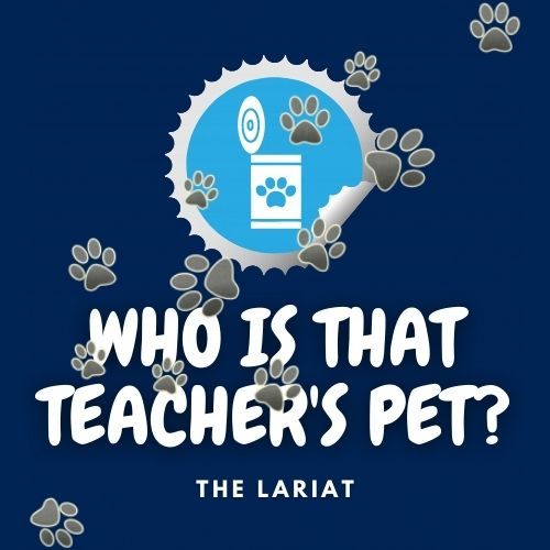 Who Is The Teacher's Pet?