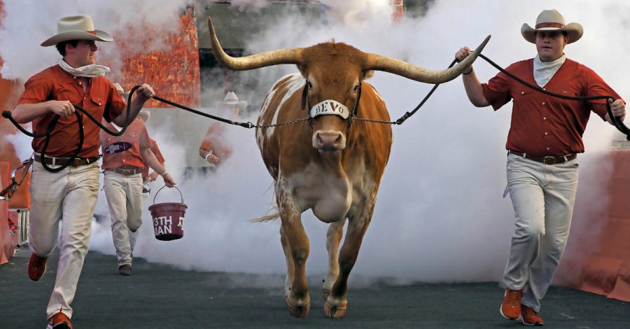Bevo: University of Texas