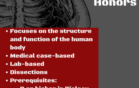 Principles of Anatomy and Physiology H