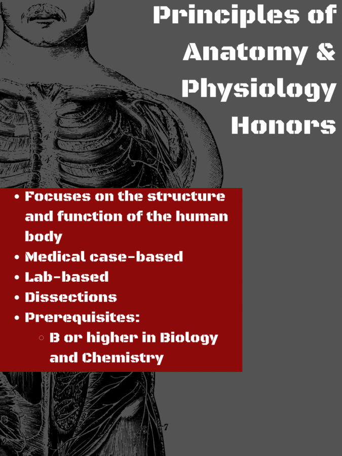Principles+of+Anatomy+and+Physiology+H
