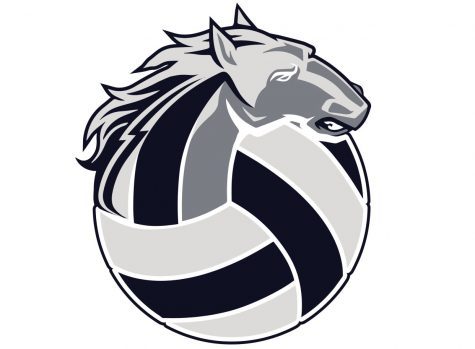 The SRHS volleyball logo