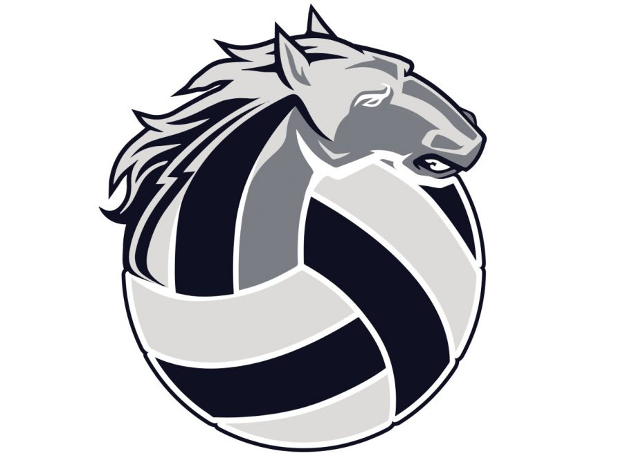 The+SRHS+volleyball+logo
