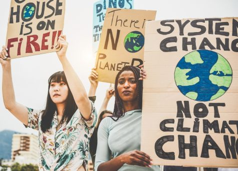 Environmental activists protesting to take action on climate change.