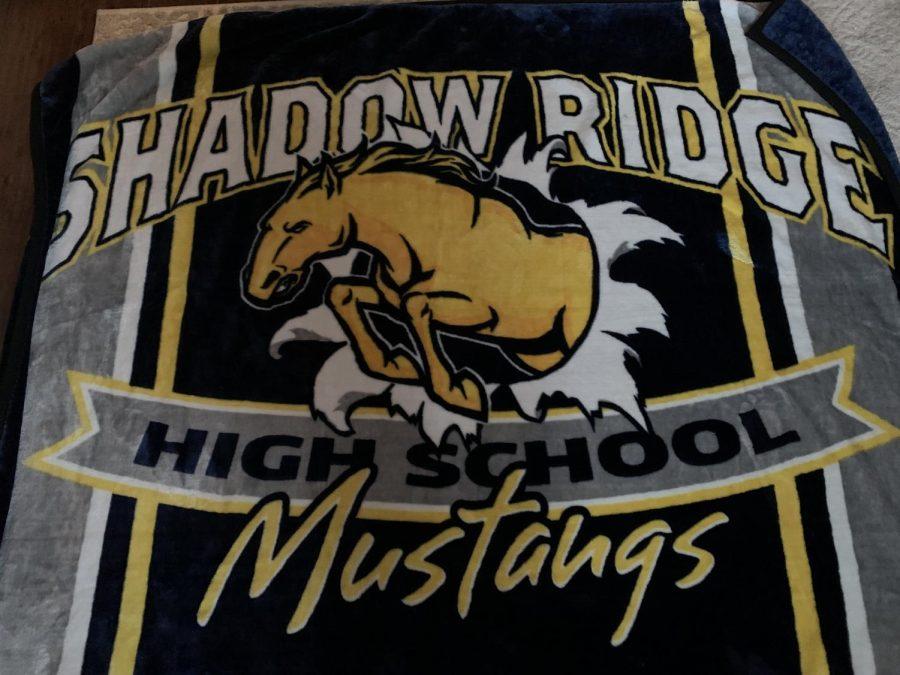 Mustang blanket
